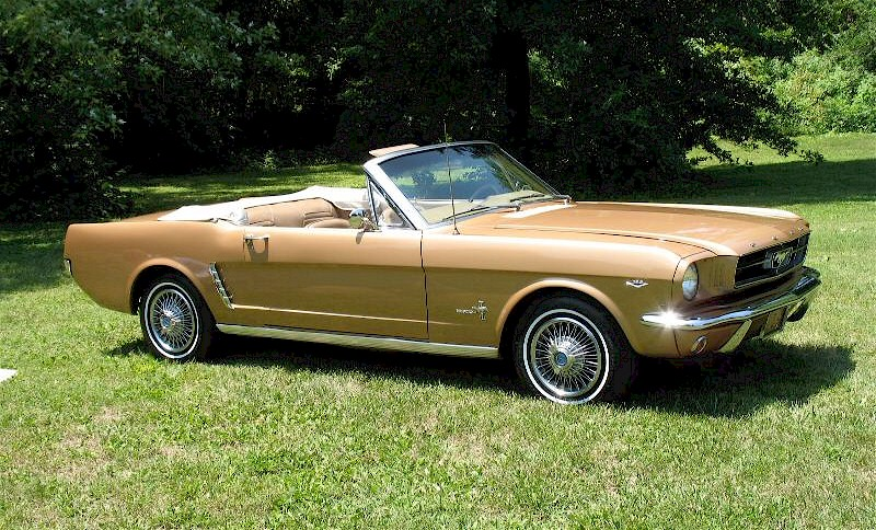 Reviving Old 1965 Mustang Paint