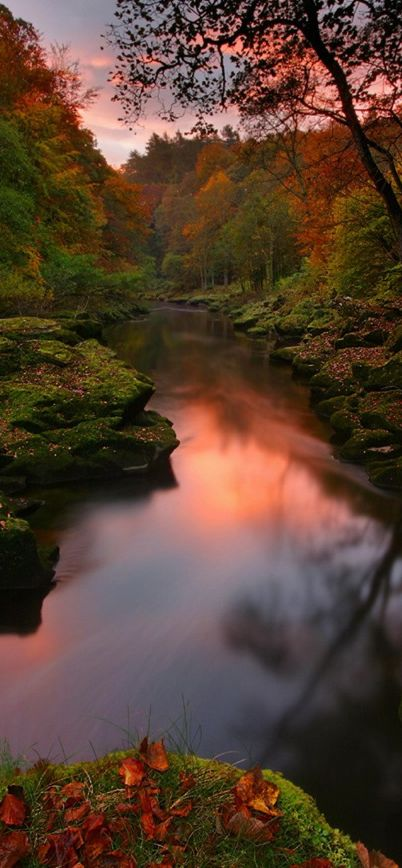 River Wharfe at Bolton Abbey in the Yorkshire Dales, United Kingdom