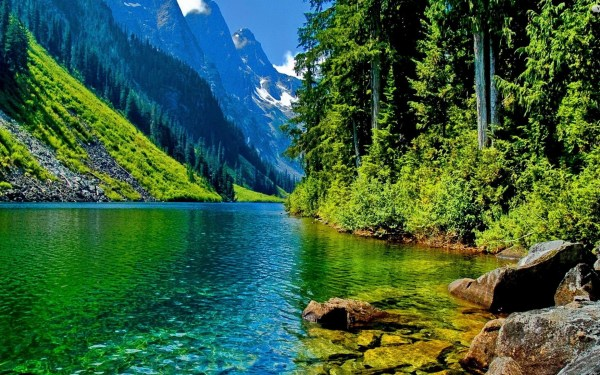 Beautiful Nature Images Free To Download – The WoW Style