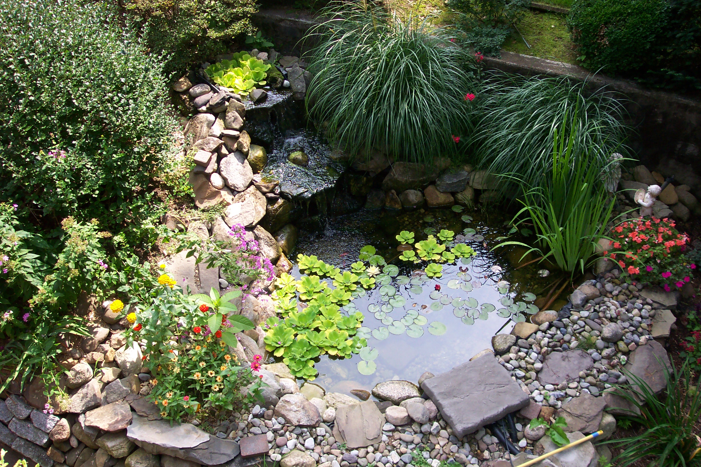 Amazing Backyard Pond Design Ideas - The WoW Style on Small Backyard Pond  id=52105