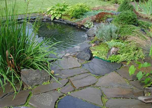 Amazing Backyard Pond Design Ideas - The WoW Style on Small Backyard Pond  id=22718
