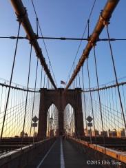 Brooklyn Patriot