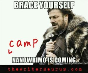brace yourself camp nano