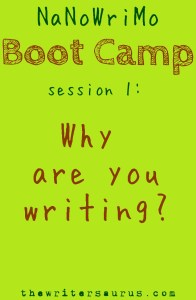 NaNoWriMo Boot Camp session 1: why are you writing? only on #thewritersaurus #amwriting #NaNoWriMo