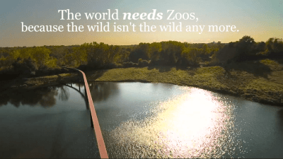 Minnesota Zoo Funding Proposal Video - The world needs zoos quote by The Writer's Ink