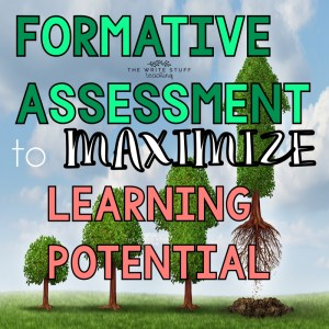 Formative Assessment to Maximize Learning Potential
