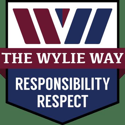 wylie way framework responsib