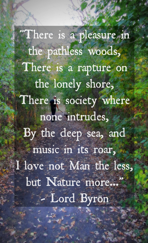 there is pleasure in the pathless woods