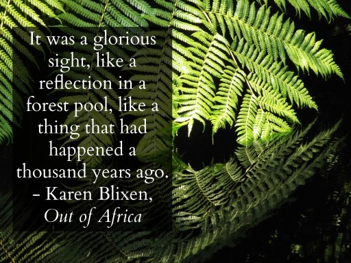 """It was a glorious sight, like a reflection in a forest pool, like a thing that had happened a thousand years ago."" - Karen Blixen, Out of Africa"