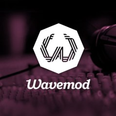Review Wavemod