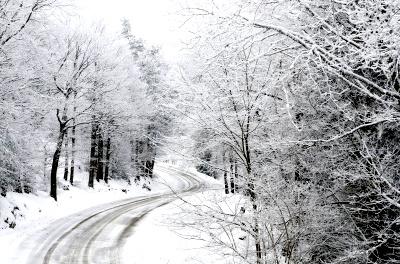 Icy road © dan | freedigitalphotos.net