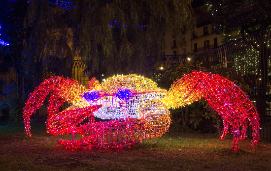 Christmas Light Crab © alisandro81 | dollarphotoclub.com