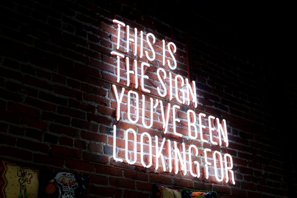 """Neon sign reading """"This is the sing you've been looking for."""""""