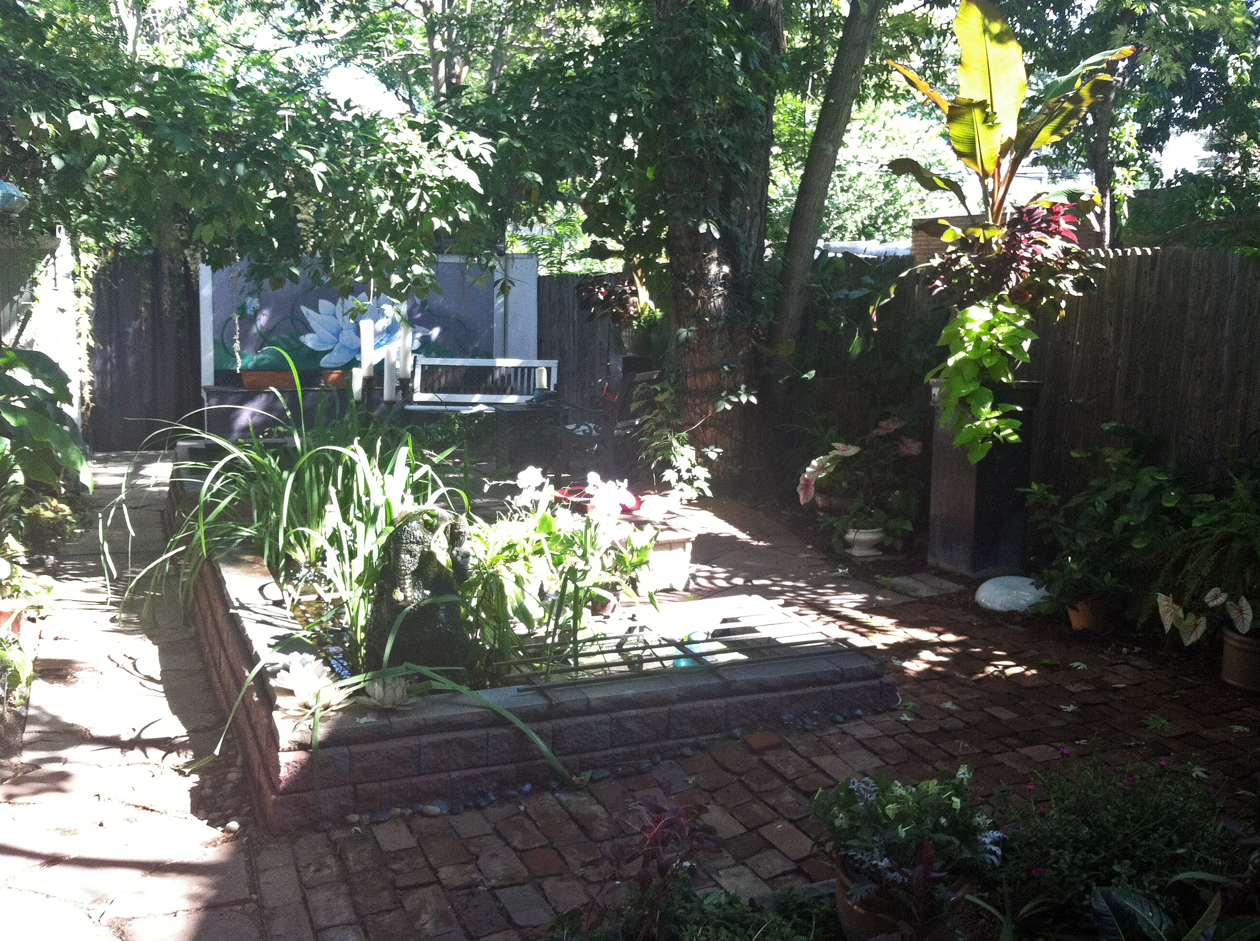 How I Made a Tropical Backyard Oasis in Denver on a Cheap ... on Tropical Backyards  id=62394