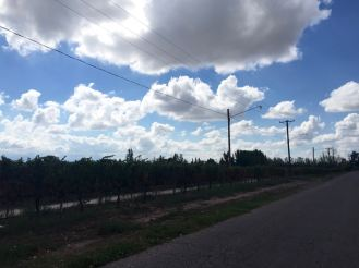 BLOG Mendoza, Cordoba, ROsario - 15 of 116