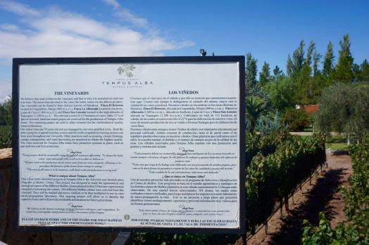 BLOG Mendoza, Cordoba, ROsario - 18 of 116