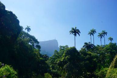 Blog Rio - 57 of 110