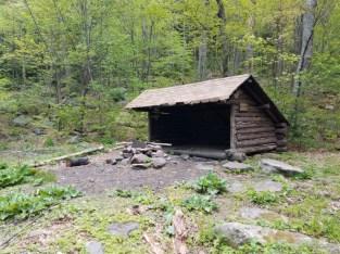 Buggy and crumbling Batavia Kills lean-to