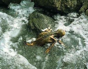 Otzi before his recovery from the ice in 1991