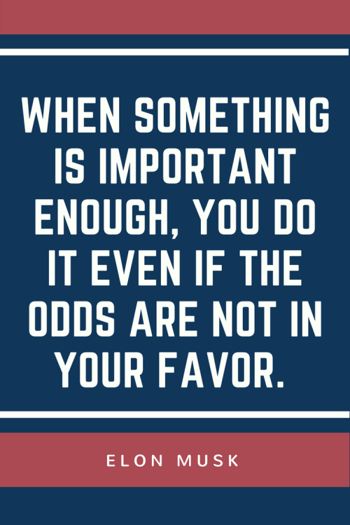 Elon Musk Quotes - When something is important enough, you do it even if the odds are not in your favor.