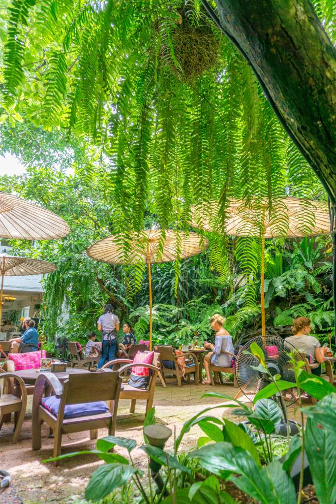 cafe in Chiang Mai - best things to do in Chiang Mai