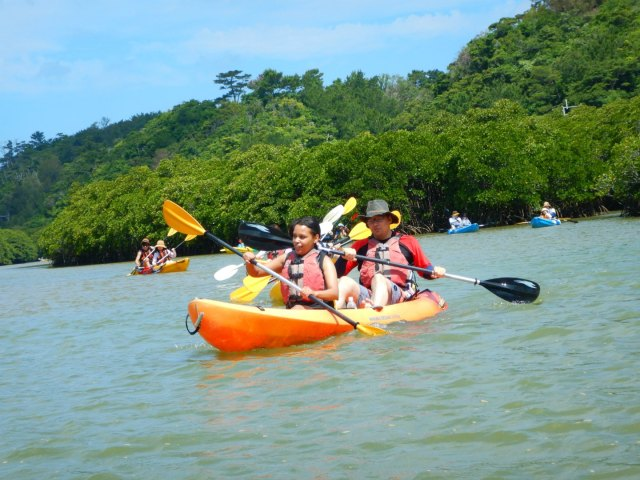 Kayaking Yanbaru Mangrove Okinawa - Complete beginners