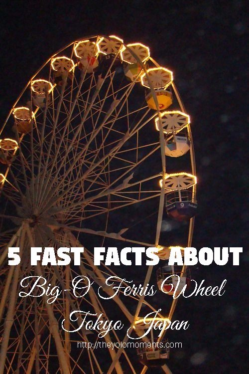 Ferris Wheel Facts - Big O Ferris Wheel Tokyo Japan