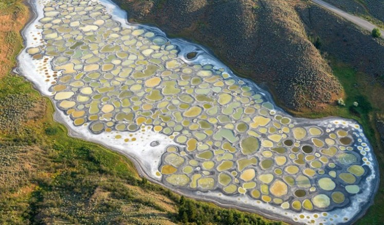 8 Fascinating Facts About Spotted Lake Kliluk Canada