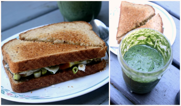 smoothie sandwich