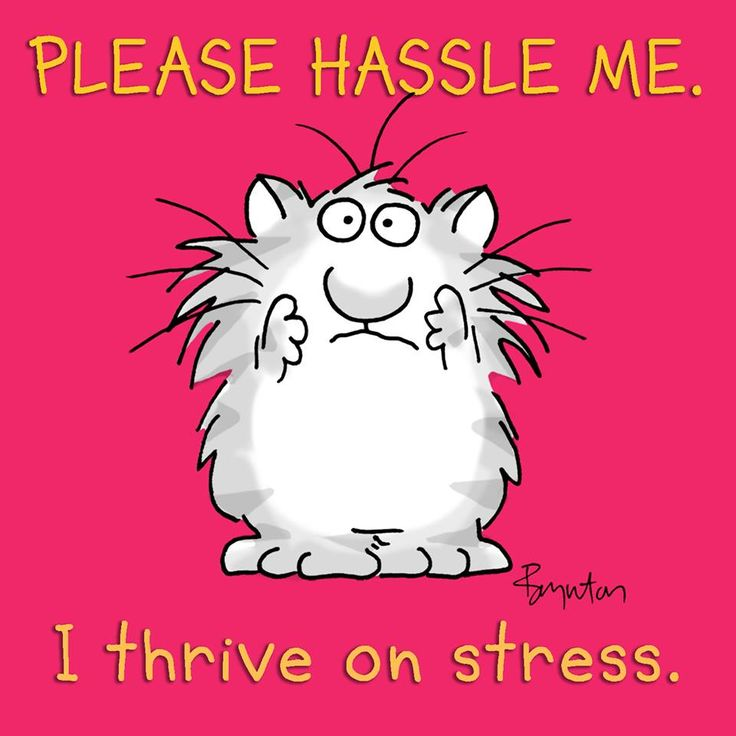 Please hassle me - I thrive on stress.jpg