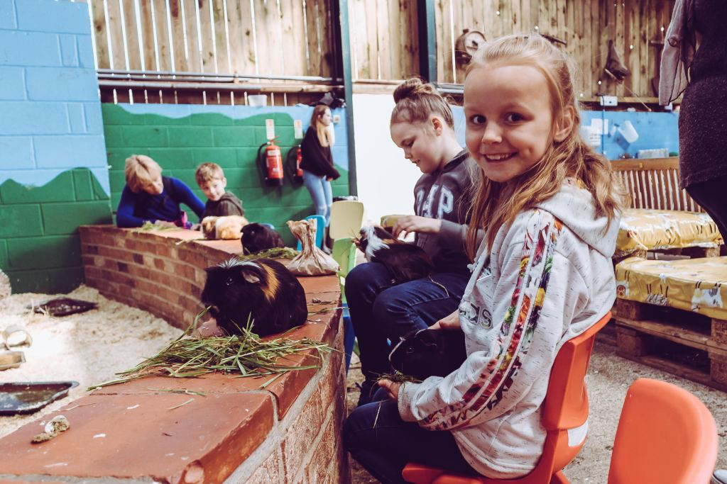 A review of Monk Park Farm near Thirsk | The Yorkshire Dad of 4