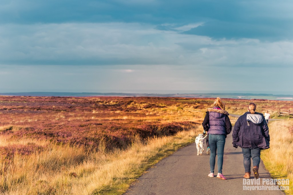 Evening Walk on the North York Moors | The Yorkshire Dad of 4