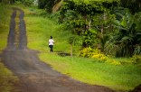 Samoan road.