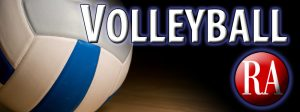 large volleyball logo