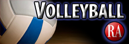 small volleyball logo