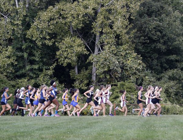 Middlebury, CT- 13 September 2016-091316CM05- Runners take off during the start of a girls cross country meet at Hop Brook in Middlebury on Tuesday. Naugatuck hosted Woodland, Kennedy, Crosby and Seymour. Christopher Massa Republican-American