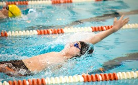 Watertown's Gianni Spiotti competes in the 100m backstroke during their meet Tuesday with Wilby-Kaynor at Watertown High School. Jim Shannon Republican American