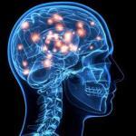 mente humana pensando