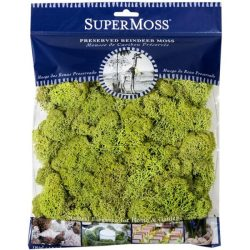SuperMoss Reindeer Moss