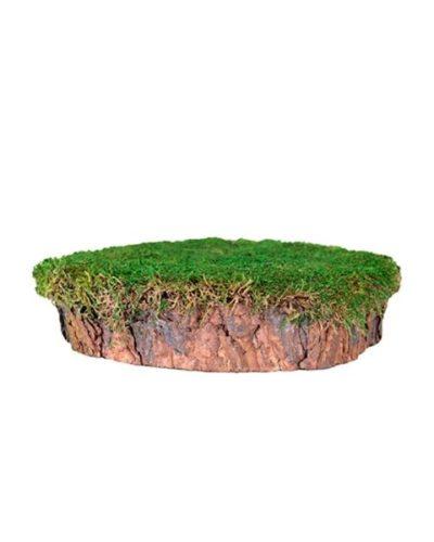 SuperMoss® Mossy Tree Stump