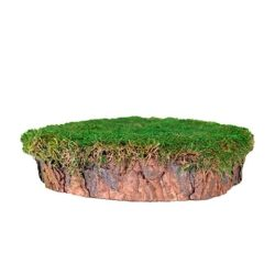 SuperMoss® Mossy Tree Stump