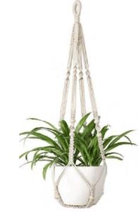 No Tassel Plant Hanger