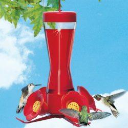 Pinch Waist - Hummingbird Feeder