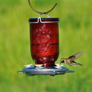 Red Mason Jar - Hummingbird Feeder
