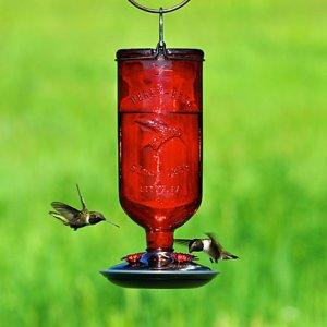 Perky-Pet® Antique Bottle Glass Hummingbird Feeder Red 16oz
