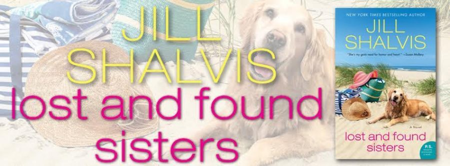 LOST AND FOUND SISTERS Excerpt Reveal