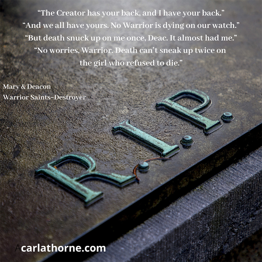 Teaser from WARRIOR SAINTS - CREATOR, the first book in the young adult supernatural fantasy series, Stonehaven Academy Saints, by Carla Thorne