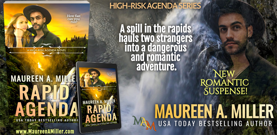 Teaser from RAPID AGENDA, the second book in the adult romantic suspense series, High-Risk Agenda, by USA Today bestselling author Maureen A. Miller