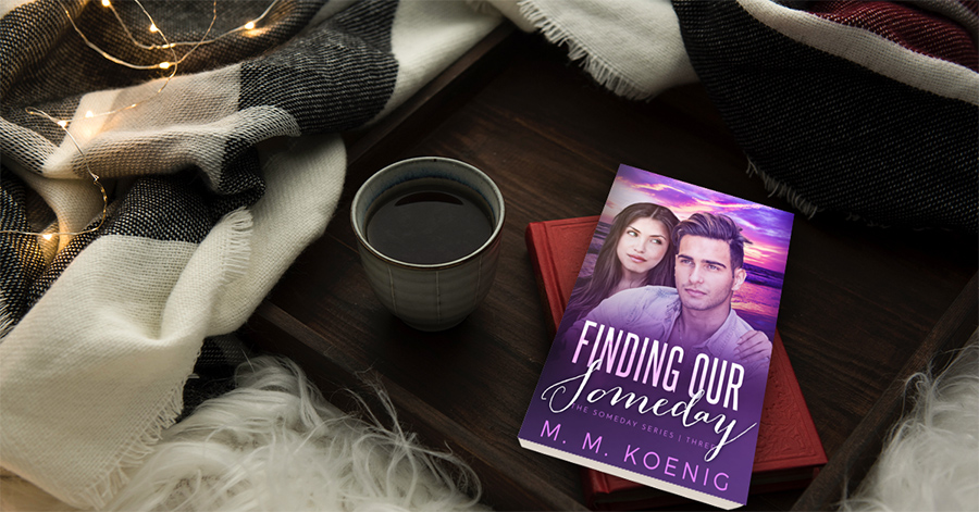 Teaser from FINDING OUR SOMEDAY, the third book in the