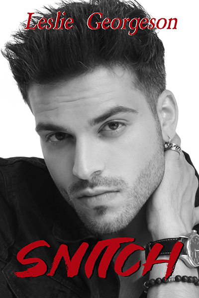SNITCH, the second book in the adult romantic suspense series, Something Real, by Leslie Georgeson